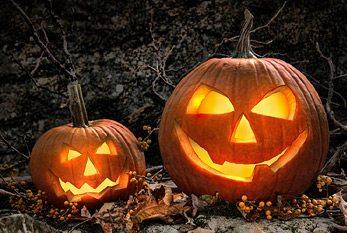 US Census Bureau: Halloween 2016 in numbers