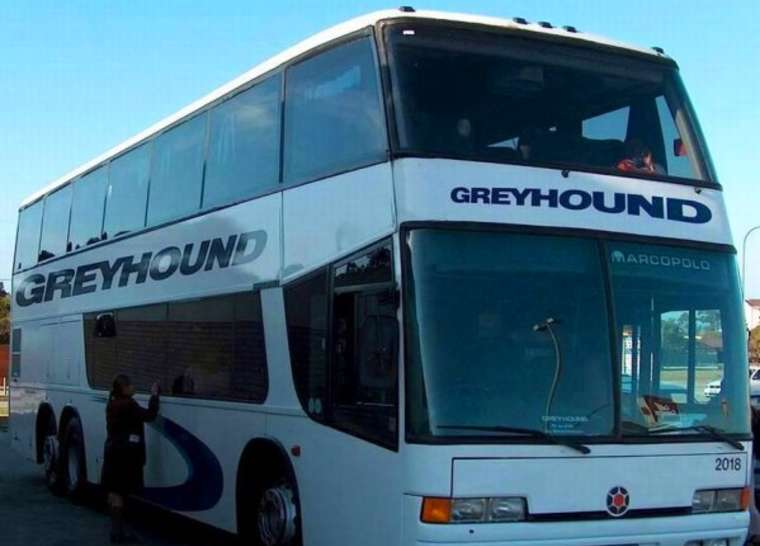 Greyhound suspends service in parts of Florida due to