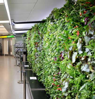 "UK's first airport ""Garden Gate"" planted and growing at Heathrow"