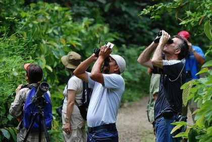 Africa's Big Birding Day breaks records and scores big for tourism