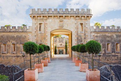 International luxury travel: loop secures market shares in Germany