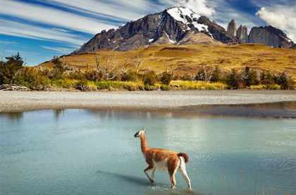 Chile to expand national parks by 11 million acres
