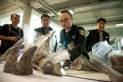 Thailand's Attorney General Implicates Senior Official in Last Week's Rhino Horn Haul