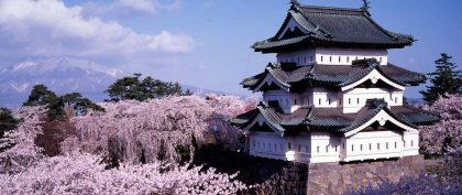 Best crowd-beating spots to see Japan's cherry blossom this Spring