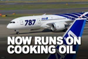 Passenger jets will soon run on cooking oil and fat