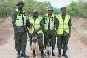 Tanzania's anti-poaching crusade takes new turn