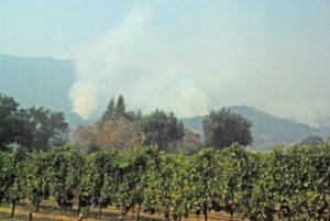 Fire Wooden Valley © Bob Ecker