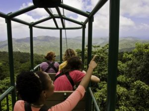 The future of tourism: Innovation challenges in the Caribbean