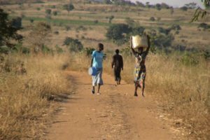 AfDB: Economic transformation of Africa's rural areas key to curtailing migration