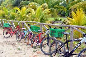 Tourists Renting Bicycles in Seychelles Island La Digue : Is it dangerous?