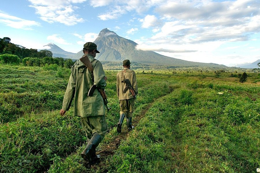 6 dead at Virunga National Park: Is it safe for tourists?