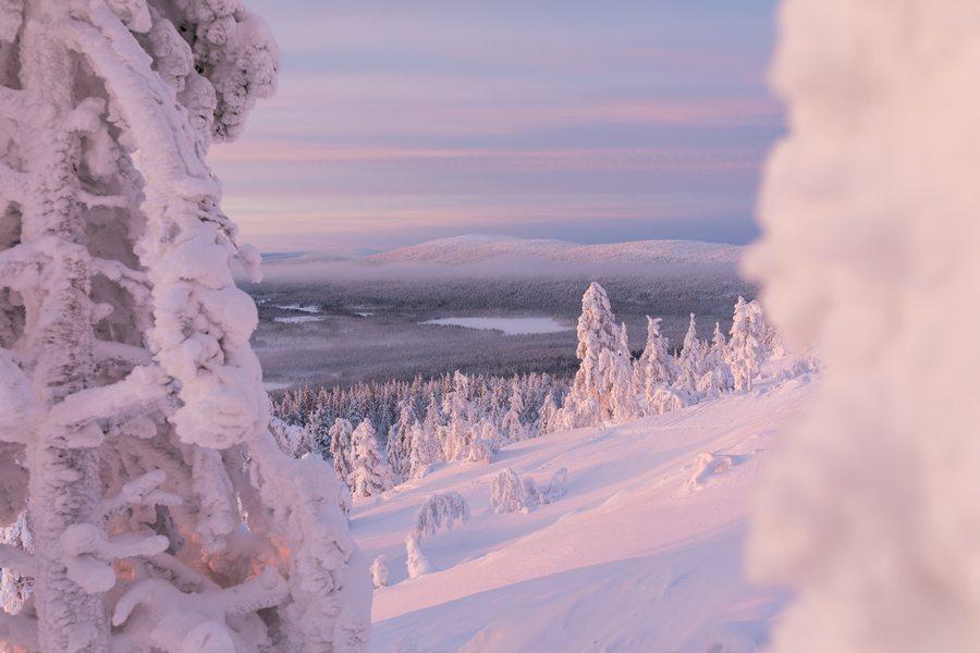 Do UAE tourists love Finland?