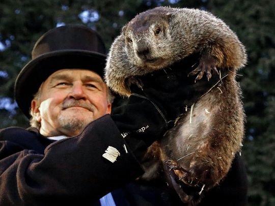 Punxsutawney Phil predicts rare early spring on Groundhog Day 2019