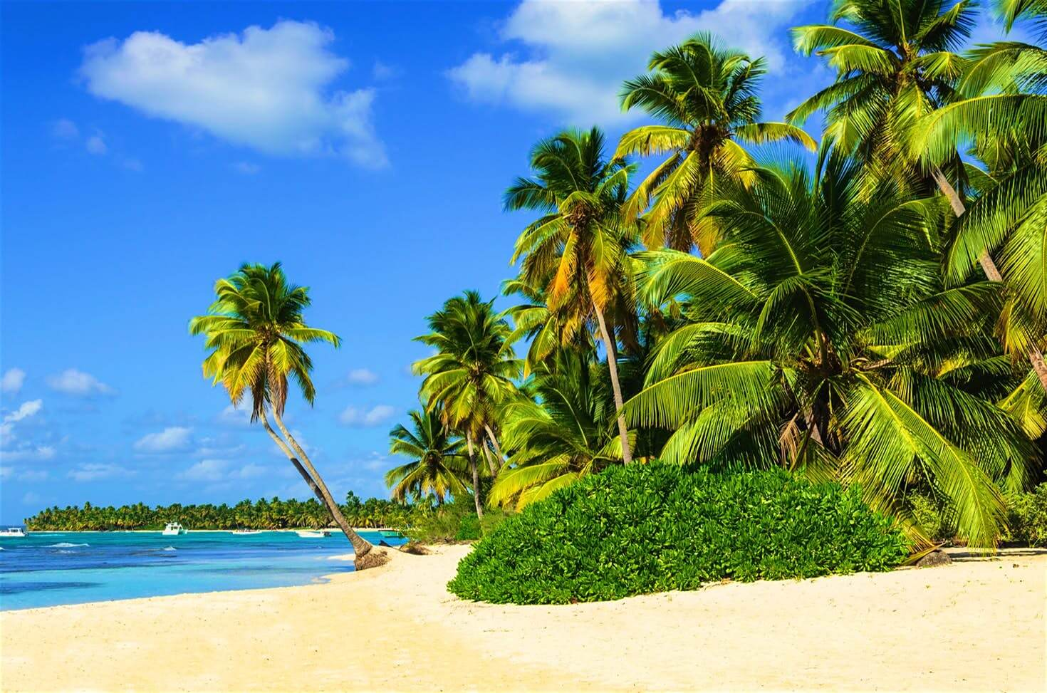 Caribbean's first travel guide is launched