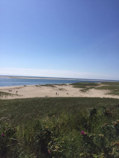 Cape Cod Beaches: Tourism almost a land apart