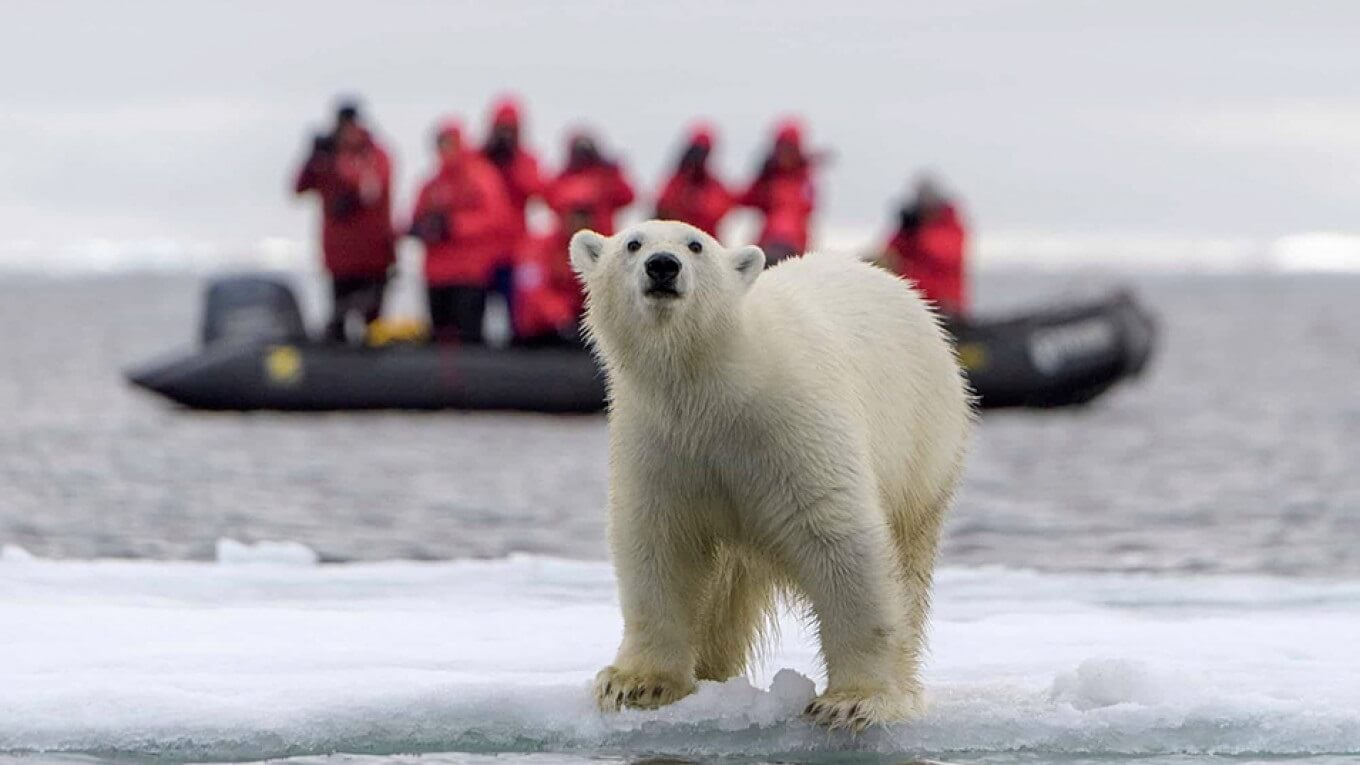 Russian Arctic National Park welcomes record 1306 visitors in 2019