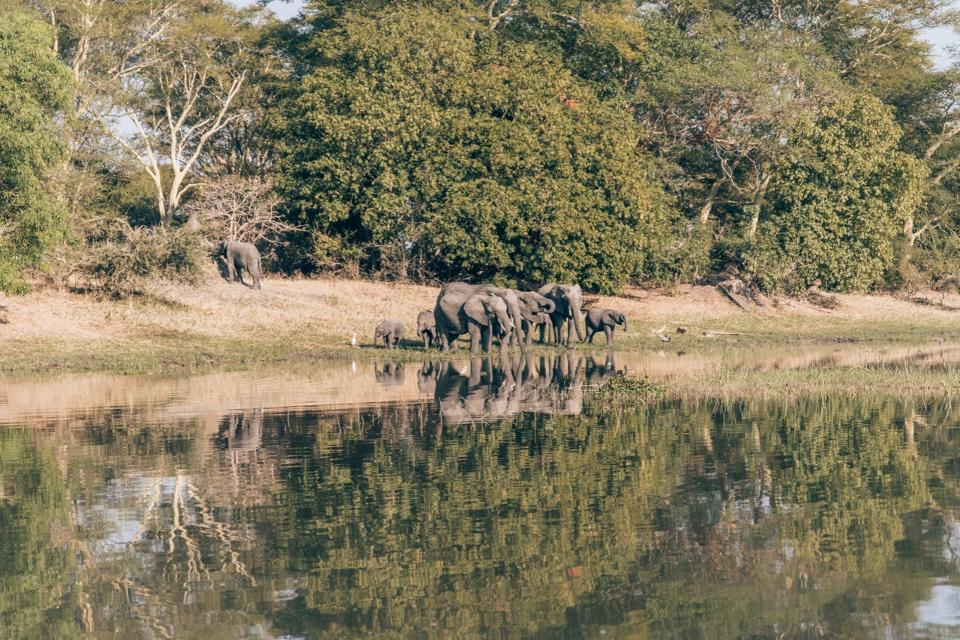 Why these Girls Love to Visit Malawi ?
