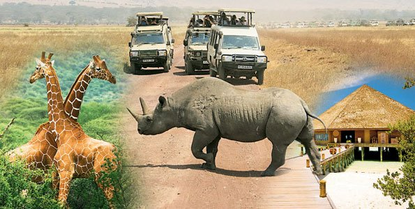 Tanzania tourism exhibition for the new generation: SITE