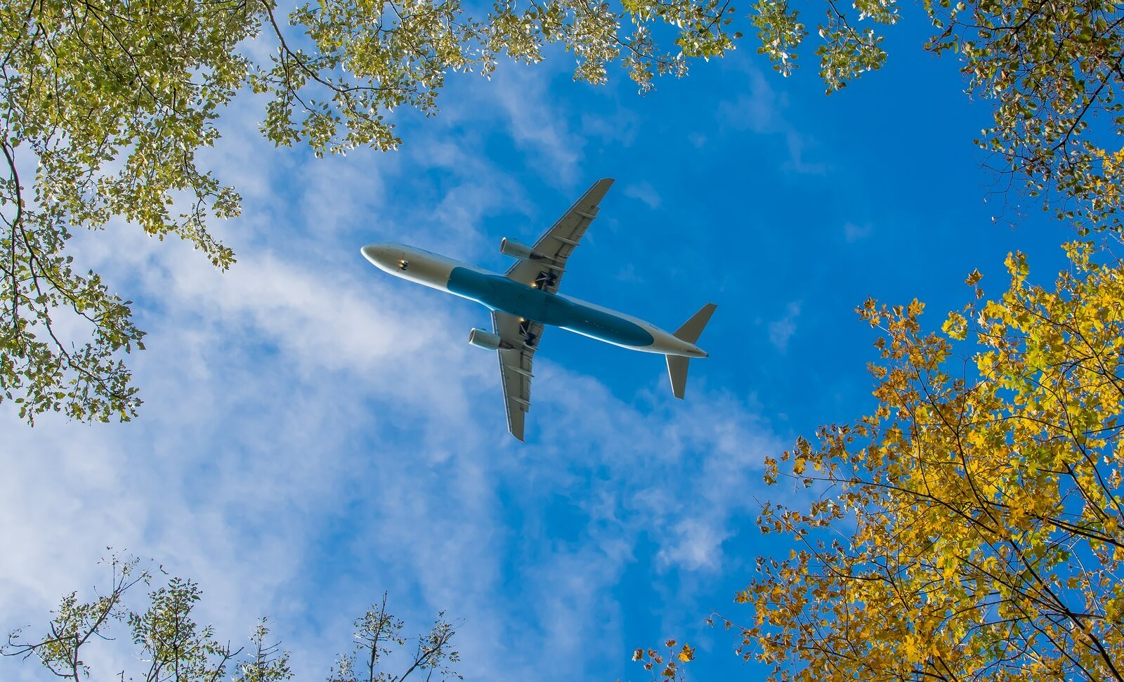 What is the role of government in green aviation?