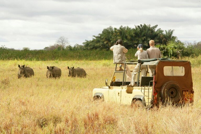 Largest photographic safari national park in East Africa set to open