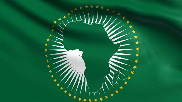 Guinea kicked out from African Union